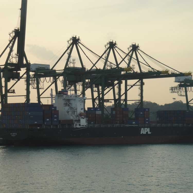 Rail Mounted ship to shore container&cargo loading&unloading STS crane